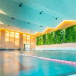 Die Schwimmhalle mit 36lfm vertikaler Gärten