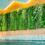 Ein lebendiger Vorhang aus gesunden Grünpflanzen